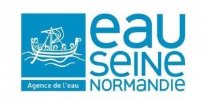 Logo AESN